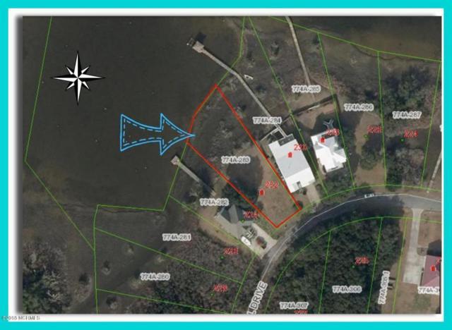 232 Shell Drive, Sneads Ferry, NC 28460 (MLS #100116985) :: Harrison Dorn Realty