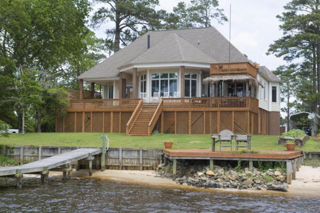 580 Mimosa Shores Road, Washington, NC 27889 (MLS #100117219) :: Berkshire Hathaway HomeServices Prime Properties