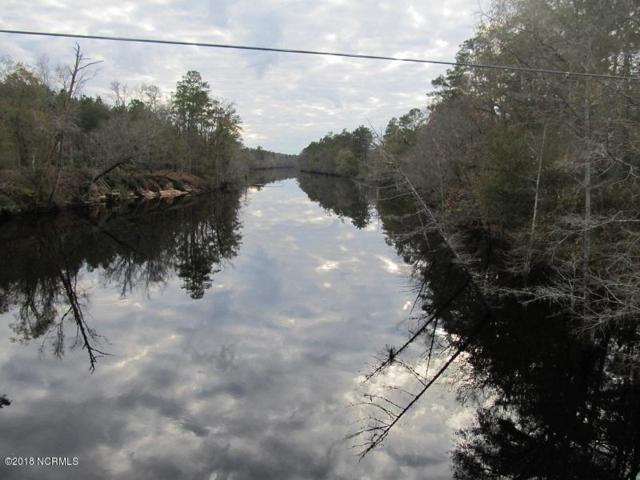Off Big Eagle Road, Atkinson, NC 28421 (MLS #100117246) :: Century 21 Sweyer & Associates