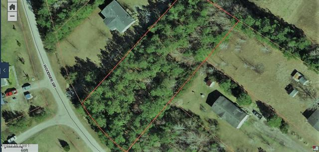 32 Woodside Drive, Hampstead, NC 28443 (MLS #100117701) :: Century 21 Sweyer & Associates