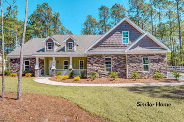 442 Crows Nest Lane, Sneads Ferry, NC 28460 (MLS #100117954) :: Courtney Carter Homes