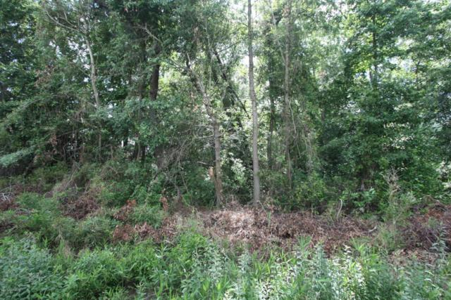 Lot 12 Snake Road, Lumberton, NC 28358 (MLS #100118061) :: Century 21 Sweyer & Associates