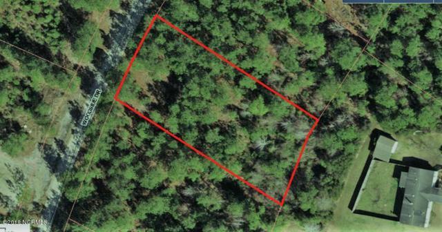 35 Woodside Drive, Hampstead, NC 28443 (MLS #100118143) :: Century 21 Sweyer & Associates