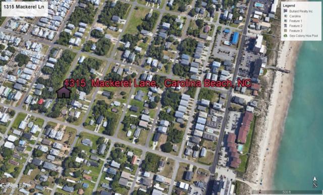 1315 Mackerel Lane, Carolina Beach, NC 28428 (MLS #100118219) :: Harrison Dorn Realty