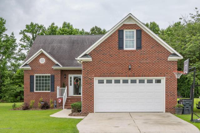 155 Cedar View Lane, Clinton, NC 28328 (MLS #100118681) :: Century 21 Sweyer & Associates