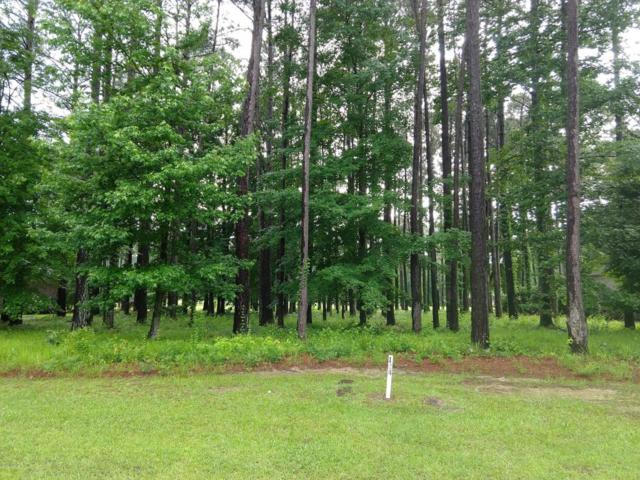 Lot 124 Santee Drive, Chocowinity, NC 27817 (MLS #100118789) :: RE/MAX Essential