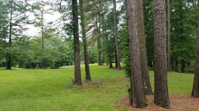Lot 51 Riverbend Drive, Burgaw, NC 28425 (MLS #100119102) :: RE/MAX Essential