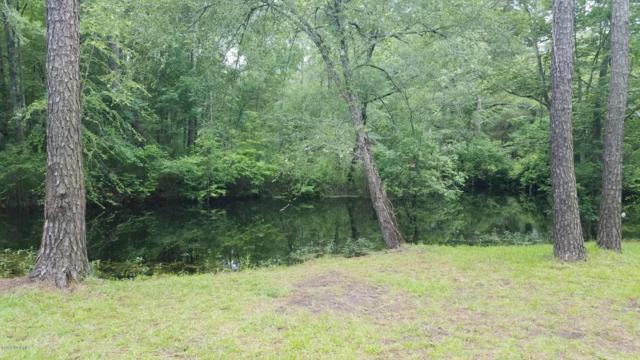 Lot 52 Riverbend Drive, Burgaw, NC 28425 (MLS #100119113) :: RE/MAX Essential