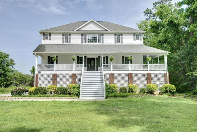 1075 Chadwick Shores Drive, Sneads Ferry, NC 28460 (MLS #100119357) :: RE/MAX Elite Realty Group