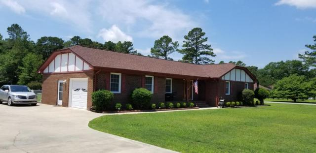3100 Side Saddle Lane, Trent Woods, NC 28562 (MLS #100119419) :: The Keith Beatty Team