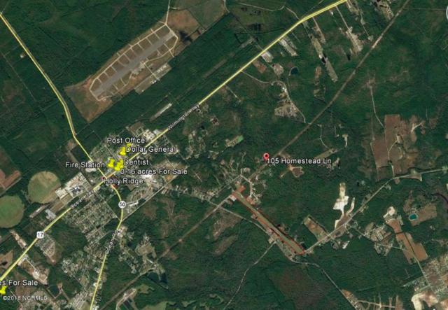 105 Homestead Lane, Holly Ridge, NC 28445 (MLS #100119687) :: Harrison Dorn Realty