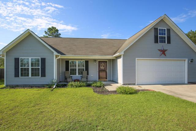 193 Ashbury Park Lane, Richlands, NC 28574 (MLS #100119731) :: The Keith Beatty Team