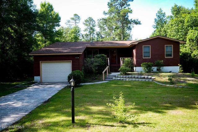 716 Davy Jones Court, New Bern, NC 28560 (MLS #100120420) :: RE/MAX Essential