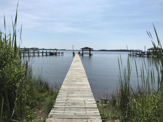 1111 Chadwick Shores Drive, Sneads Ferry, NC 28460 (MLS #100120567) :: RE/MAX Elite Realty Group