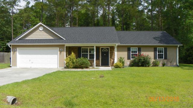 219 Peters Lane, Jacksonville, NC 28540 (MLS #100120974) :: RE/MAX Essential