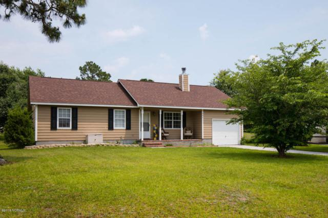 401 Cascade Court, Hubert, NC 28539 (MLS #100121250) :: RE/MAX Essential