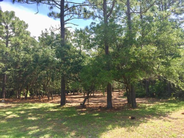 3724 Winstead Circle, Southport, NC 28461 (MLS #100121274) :: SC Beach Real Estate