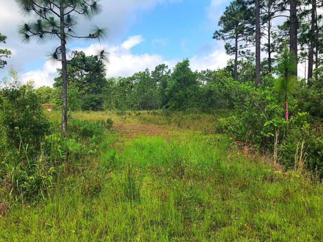 Lot 25 Lakeview Road, Boiling Spring Lakes, NC 28461 (MLS #100121312) :: Berkshire Hathaway HomeServices Prime Properties
