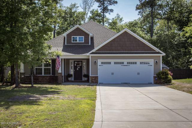240 Marsh Haven Drive, Sneads Ferry, NC 28460 (MLS #100121365) :: The Oceanaire Realty