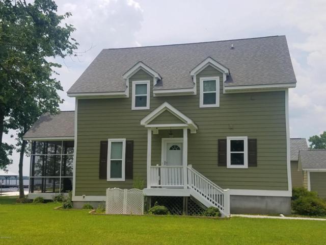 1342 Baytree Drive, Harrells, NC 28444 (MLS #100121531) :: Century 21 Sweyer & Associates