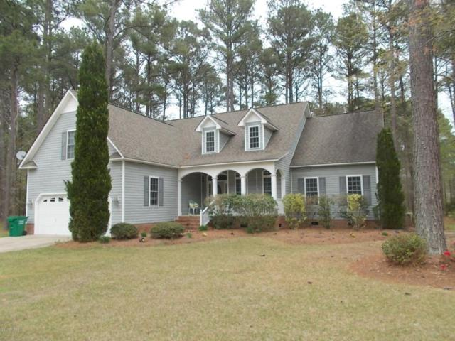 121 Thames Lane, Chocowinity, NC 27817 (MLS #100122135) :: RE/MAX Essential