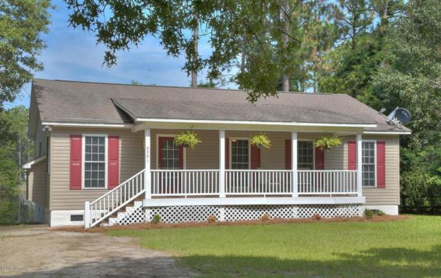 2391 Frink Lake Drive, Southport, NC 28461 (MLS #100122260) :: RE/MAX Essential