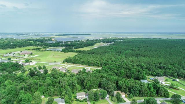 116 4H Camp Road, Swansboro, NC 28584 (MLS #100122358) :: The Keith Beatty Team