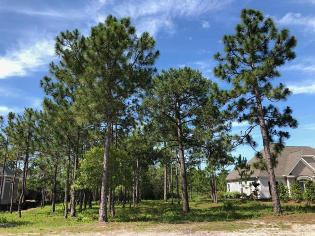 3236 Moss Hammock Wynd, Southport, NC 28461 (MLS #100122535) :: RE/MAX Essential