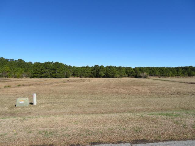 69 E Dowry Creek, Belhaven, NC 27810 (MLS #100123912) :: Courtney Carter Homes