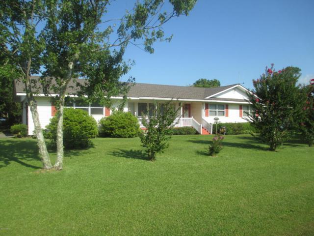 175 Diamond City Drive, Harkers Island, NC 28531 (MLS #100124139) :: The Cheek Team