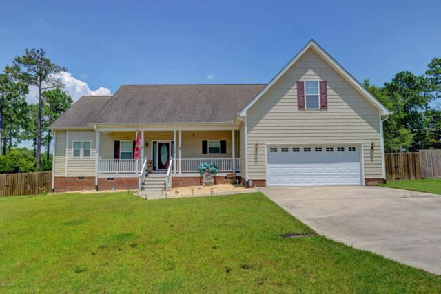 706 Daniel Lindsey Court, Sneads Ferry, NC 28460 (MLS #100124640) :: RE/MAX Elite Realty Group