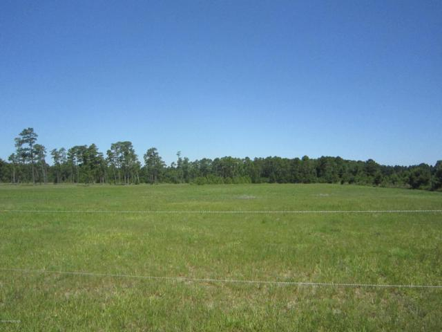 Lt 7 Haw Branch Road, Beulaville, NC 28518 (MLS #100124823) :: Courtney Carter Homes