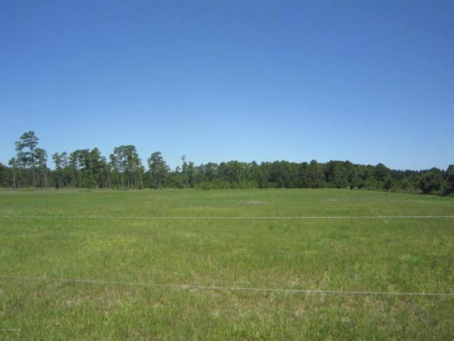Lt 6 Haw Branch, Beulaville, NC 28518 (MLS #100124942) :: Courtney Carter Homes