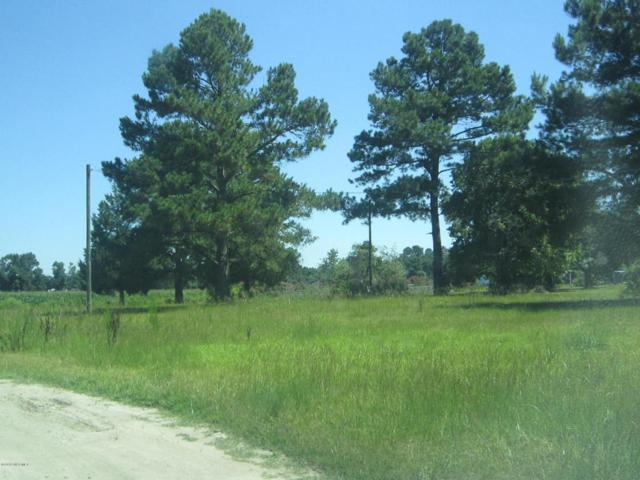 164 Sheri Lane, Beulaville, NC 28518 (MLS #100125042) :: Courtney Carter Homes