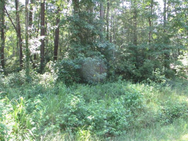 14 Myrtlewood Drive, Carolina Shores, NC 28467 (MLS #100125074) :: Century 21 Sweyer & Associates