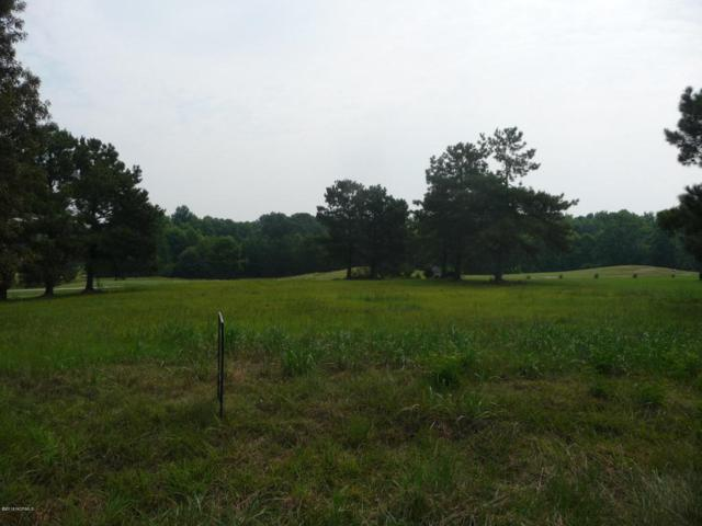 Lot 27 Timberlake Drive, Clinton, NC 28328 (MLS #100125336) :: The Keith Beatty Team