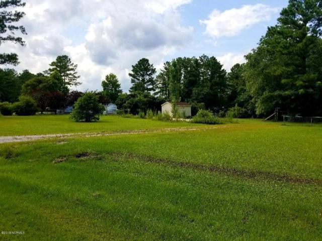 208 Hadnot Drive, Swansboro, NC 28584 (MLS #100125561) :: Century 21 Sweyer & Associates
