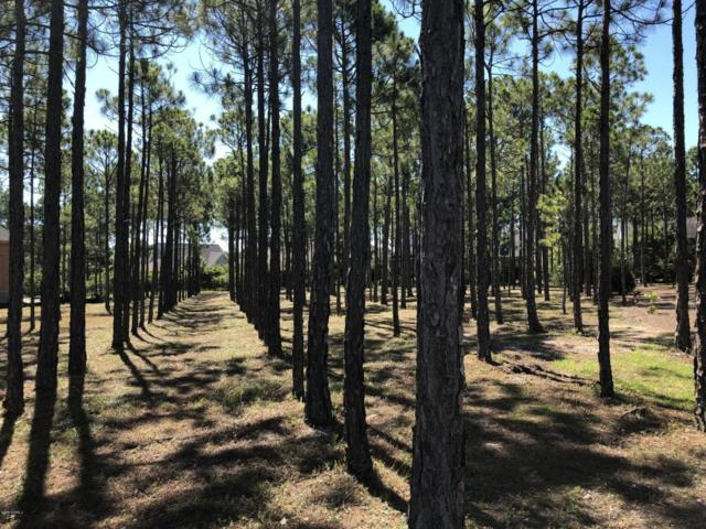 3857 Fairhaven Drive, Southport, NC 28461 (MLS #100125772) :: RE/MAX Essential