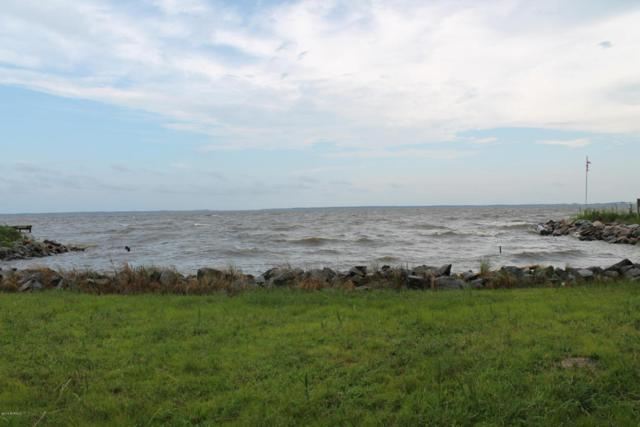 000 Old Pamlico Beach Road W, Belhaven, NC 27810 (MLS #100126089) :: Harrison Dorn Realty