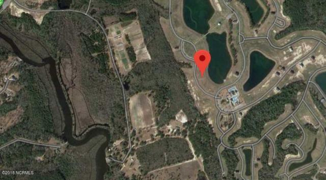 463 Summerhouse Drive, Holly Ridge, NC 28445 (MLS #100126124) :: Century 21 Sweyer & Associates