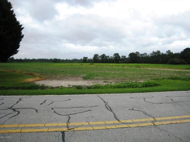 236 Cedar Fork Road, Beulaville, NC 28518 (MLS #100126300) :: Berkshire Hathaway HomeServices Prime Properties