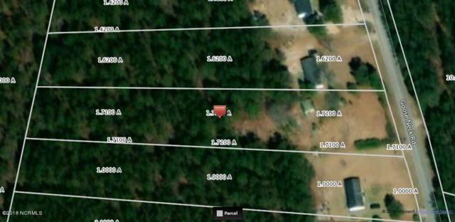 5014 Goose Neck Road NE, Riegelwood, NC 28456 (MLS #100126754) :: Century 21 Sweyer & Associates