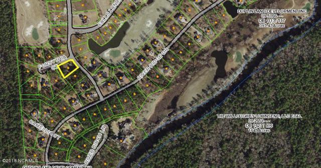 117 Pine Ridge Drive, Wallace, NC 28466 (MLS #100126831) :: Coldwell Banker Sea Coast Advantage