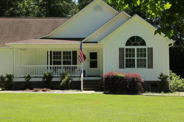 102 Candlewood Drive, Hampstead, NC 28443 (MLS #100129137) :: Century 21 Sweyer & Associates