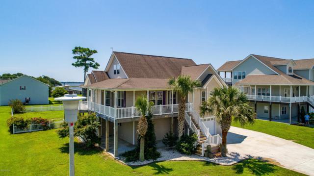 407 Coastal View Court, Newport, NC 28570 (MLS #100129467) :: Coldwell Banker Sea Coast Advantage