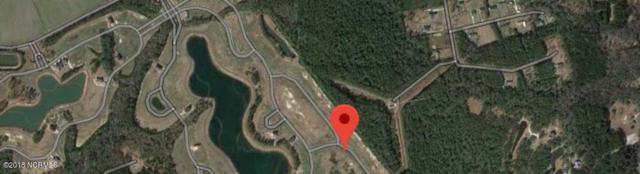 510 Moss Lake Lane, Holly Ridge, NC 28445 (MLS #100129719) :: Terri Alphin Smith & Co.