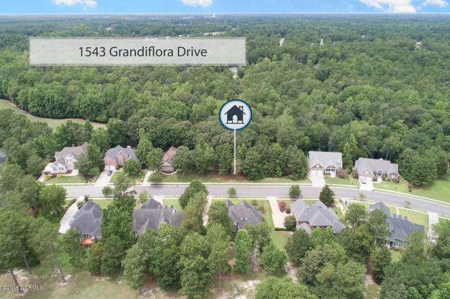 1543 Grandiflora Drive, Leland, NC 28451 (MLS #100129741) :: Coldwell Banker Sea Coast Advantage