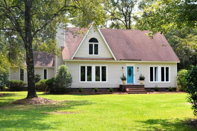 920 Shelter Creek Drive, Burgaw, NC 28425 (MLS #100130314) :: Century 21 Sweyer & Associates