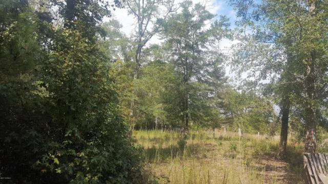 Parcel A N Tanglewood Drive, Supply, NC 28462 (MLS #100131051) :: Century 21 Sweyer & Associates