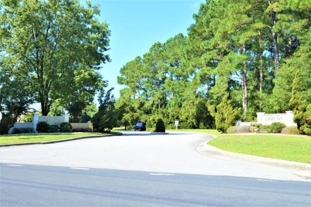 202 Cedar Key Way, Newport, NC 28570 (MLS #100131154) :: Donna & Team New Bern